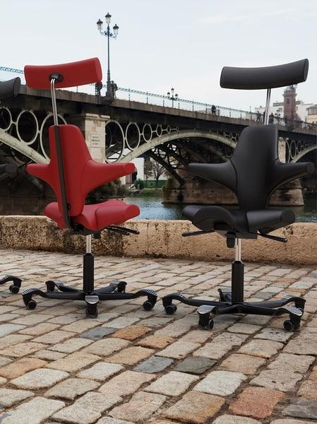 Hag Capisco Chair Texture Maps
