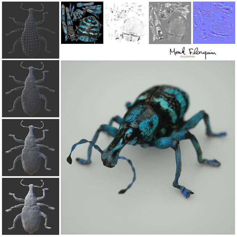 Mark-Florquin-Blue-Beatle-Normal-Map-3D-Model-Wireframe-Level-of-Detail.jpg