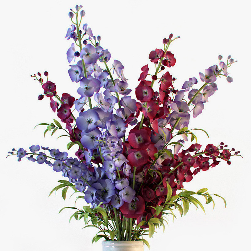 Delphinium_flowers_in_vase_01.jpg