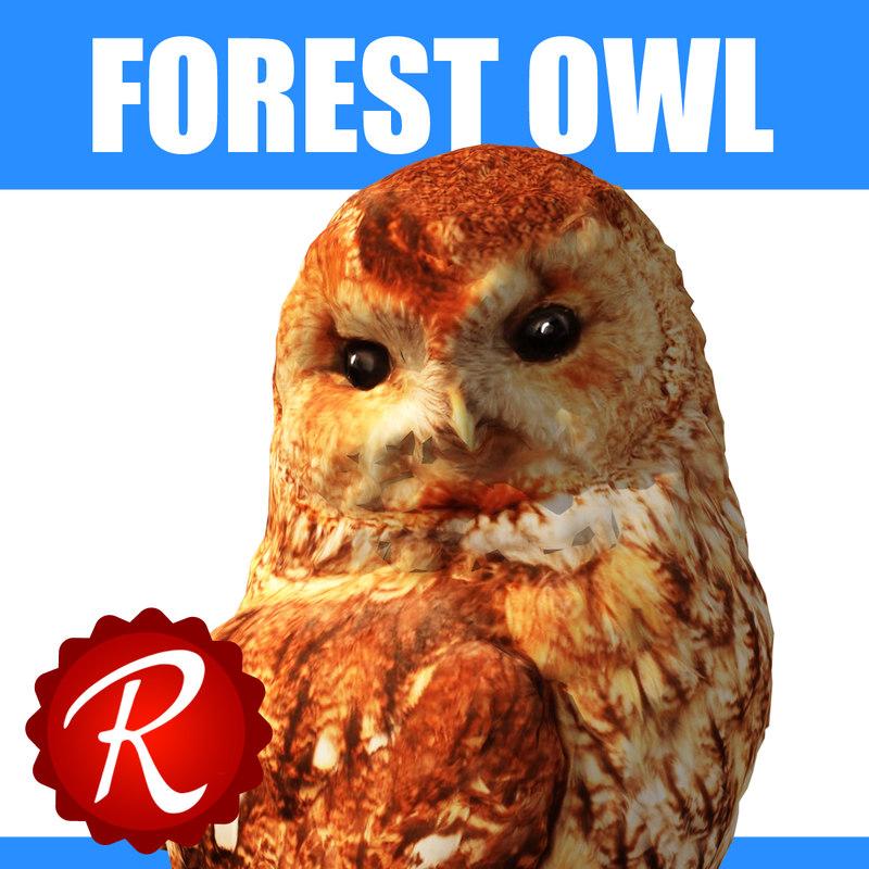 forest owl thumbnail.jpg