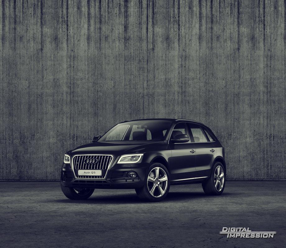 Audi_Q5_view03.jpg