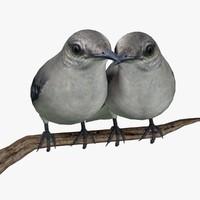 Mockingbird 3D models