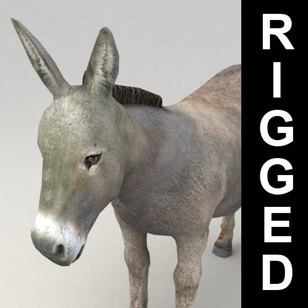Donkey_v1.jpg