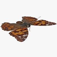 West Coast Lady Butterfly 3D models