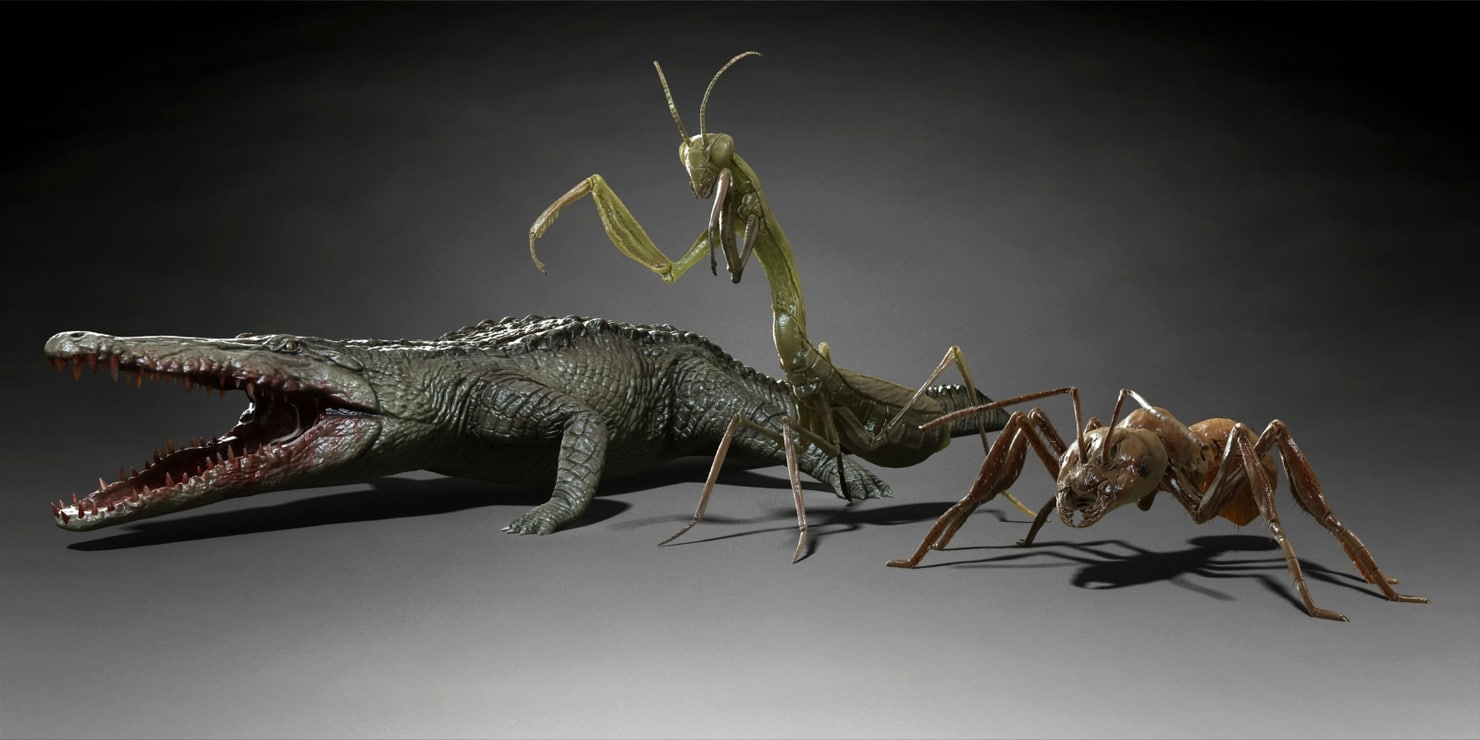 Alligator Crocodile Mantis Ant creature