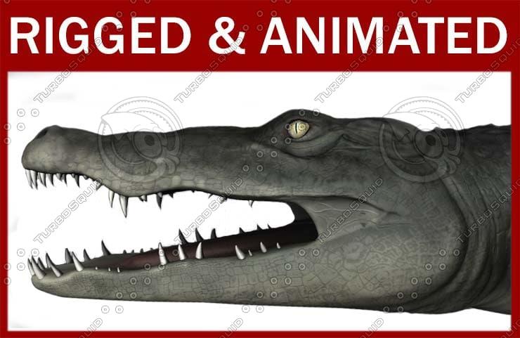 crocodilefront.jpg