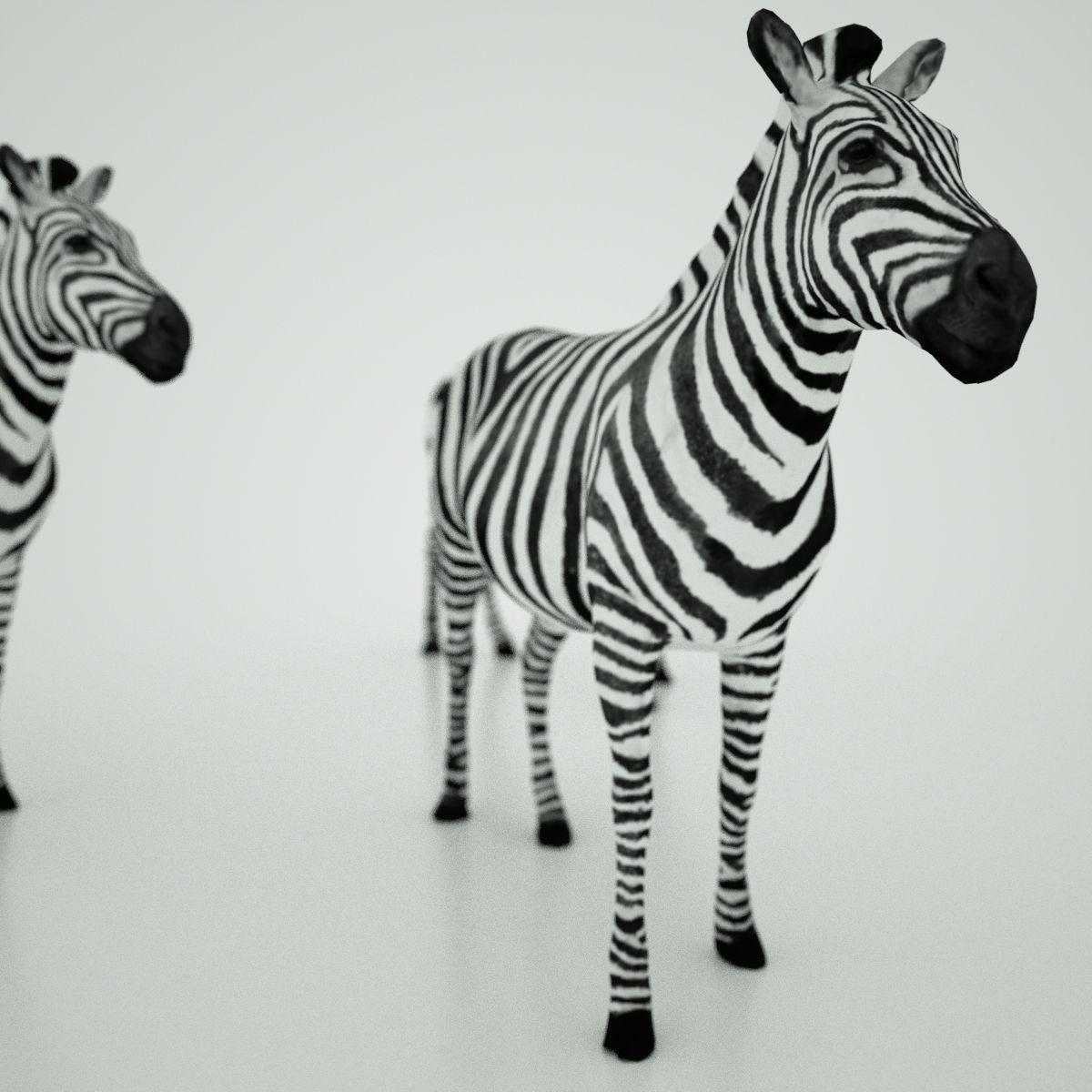 Mark-Florquin-Zebra-Africa-3D-model-3.jpg