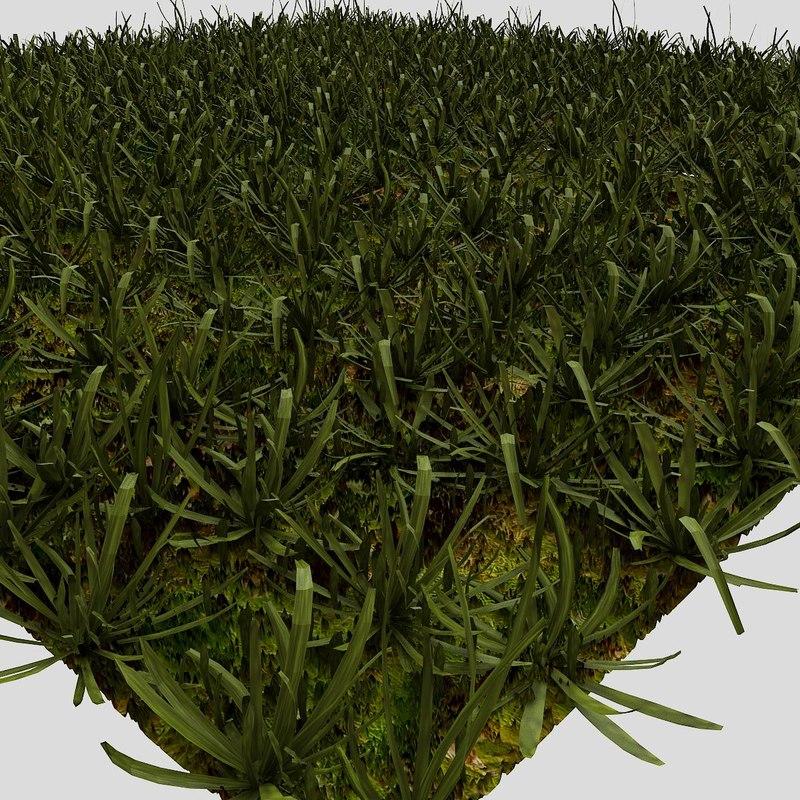 grass 05