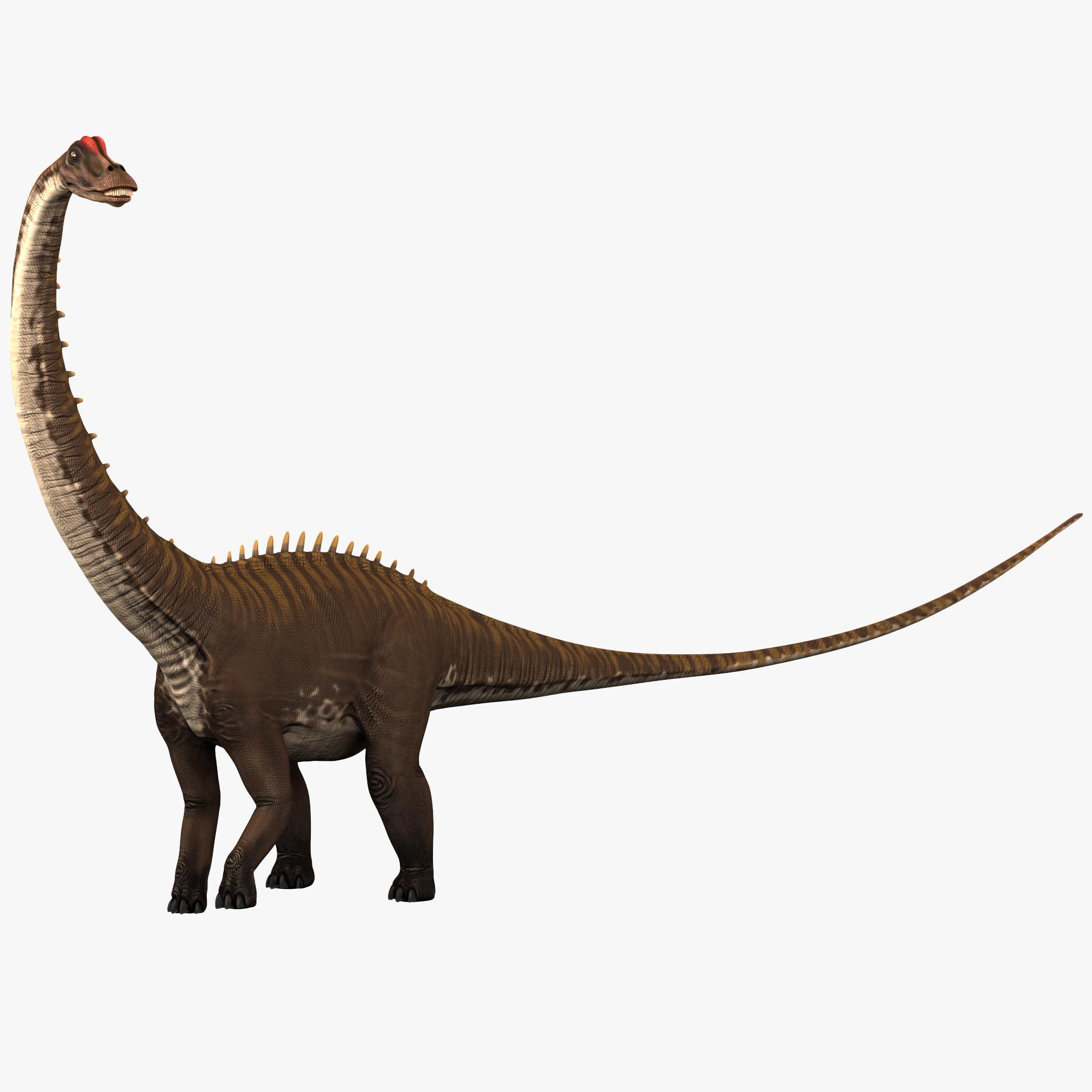 Diplodocus And Kentrosaurus Models: Diplodocus Pose 1 Max