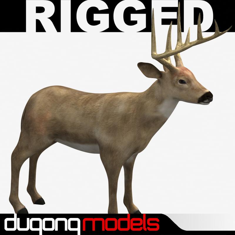 rigged_02.jpg