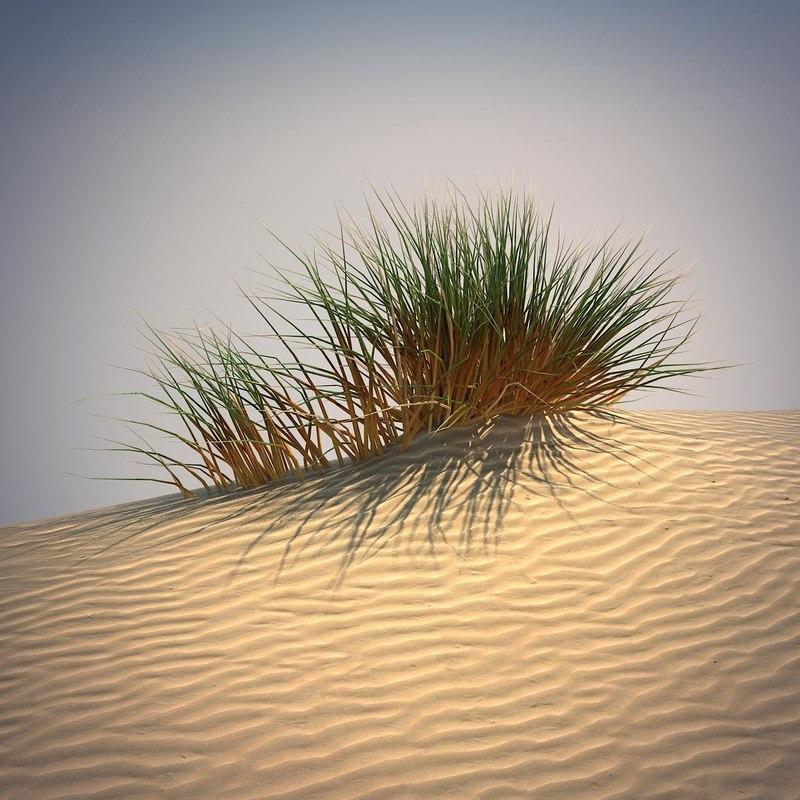 3d desert grass set. Black Bedroom Furniture Sets. Home Design Ideas