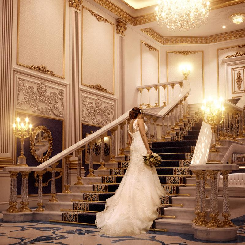 Bridal Vinette.jpg
