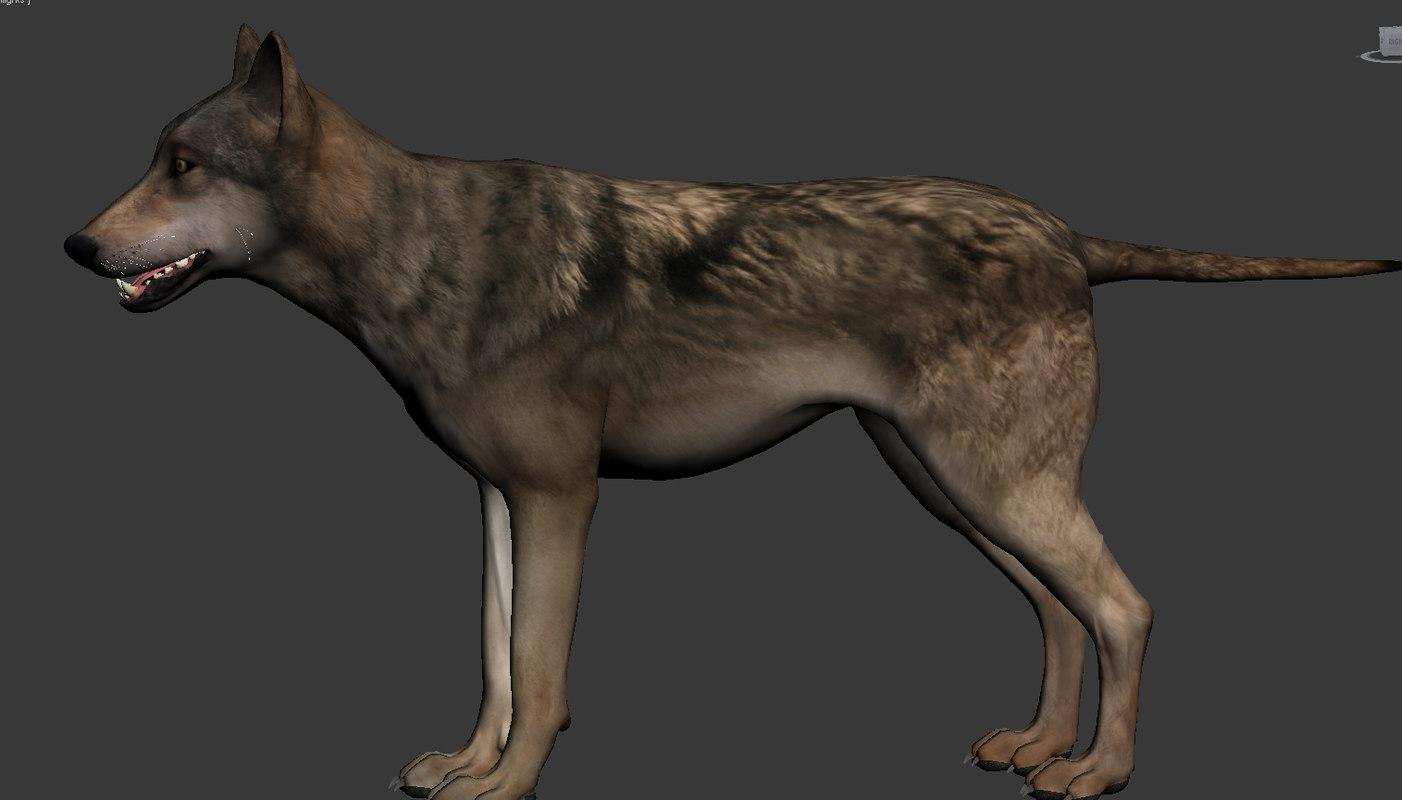 Wolf - model
