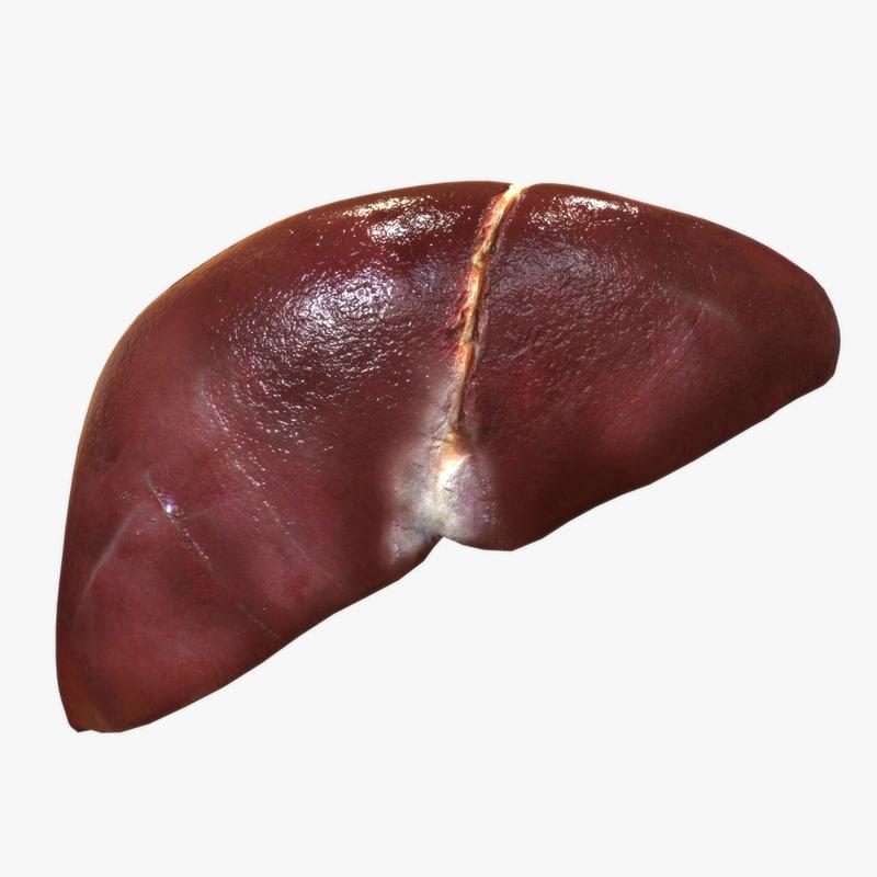 Actual Human Liver