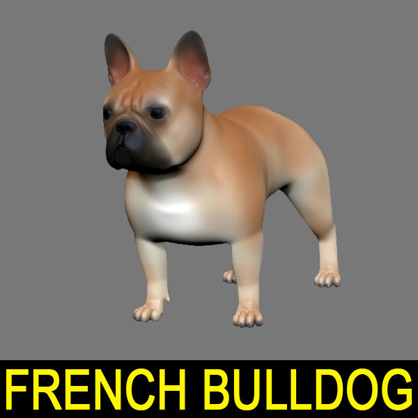 French-Bulldog-01.jpg