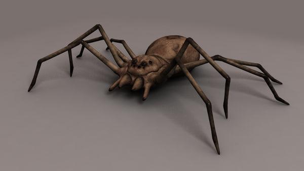 Spider Texture Maps