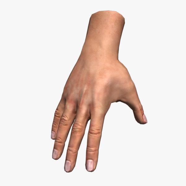 Hand (Rigged)