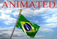 brazilian flag 3D models
