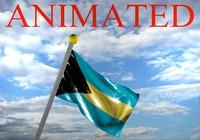 Bahamas Flag 3D models