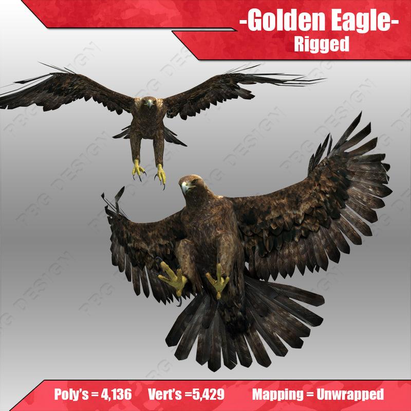 Eagle_4.jpg