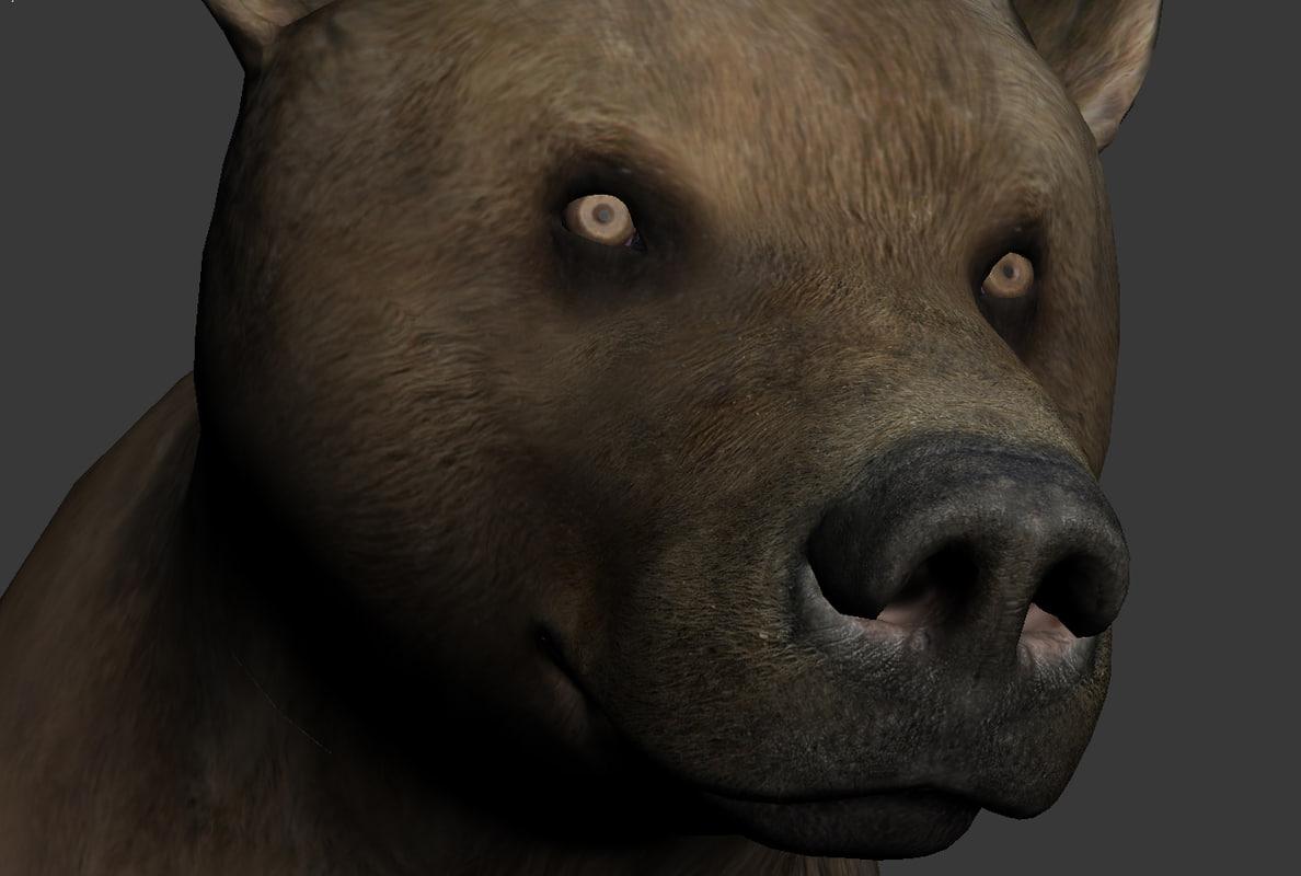 Bear_onlymodel