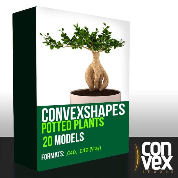 Potted Plants - C4D 3D Models