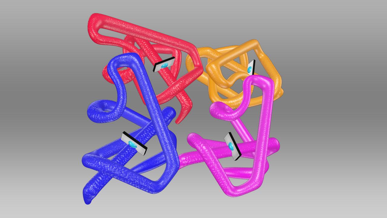 Hemoglobin Molecule_01.jpg