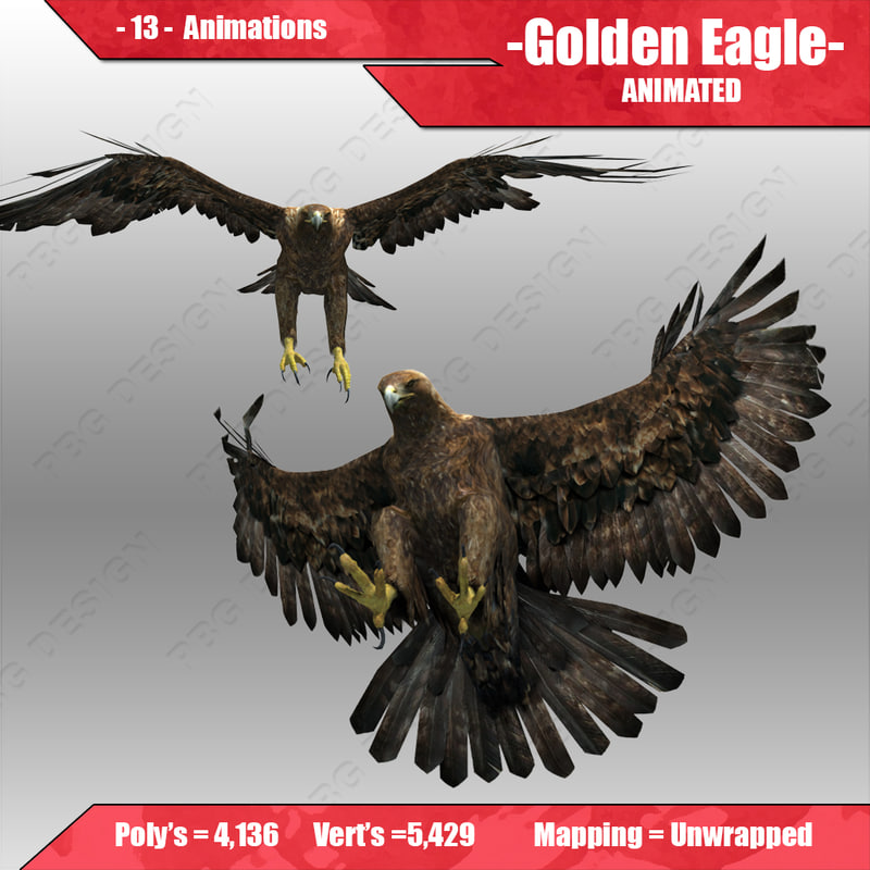 A_Eagle_4.jpg