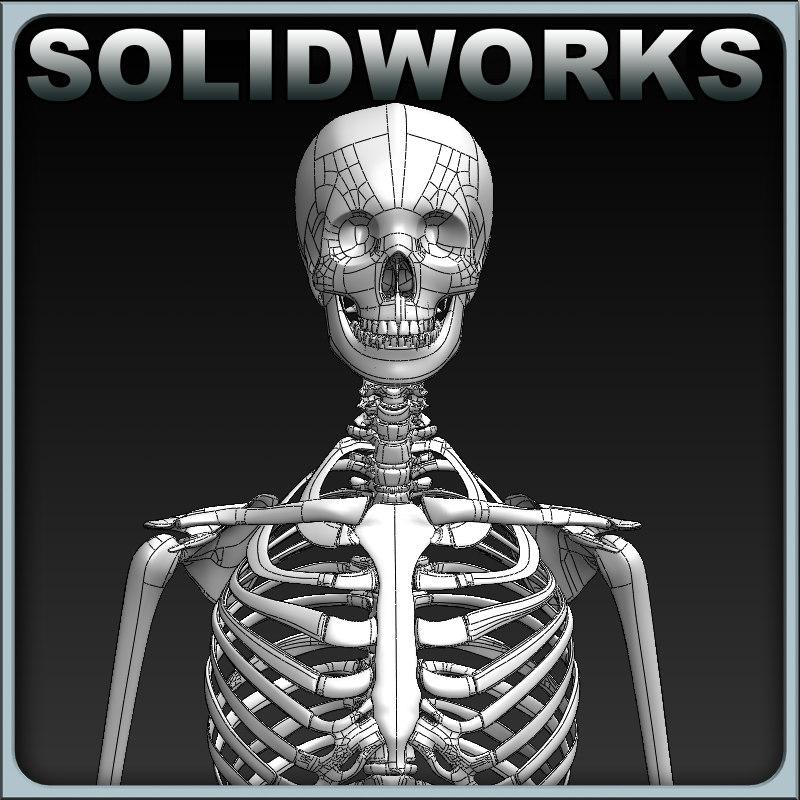 Solidworks_skeleton_render_01.jpg