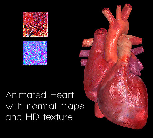 Heart Animated Texture Maps