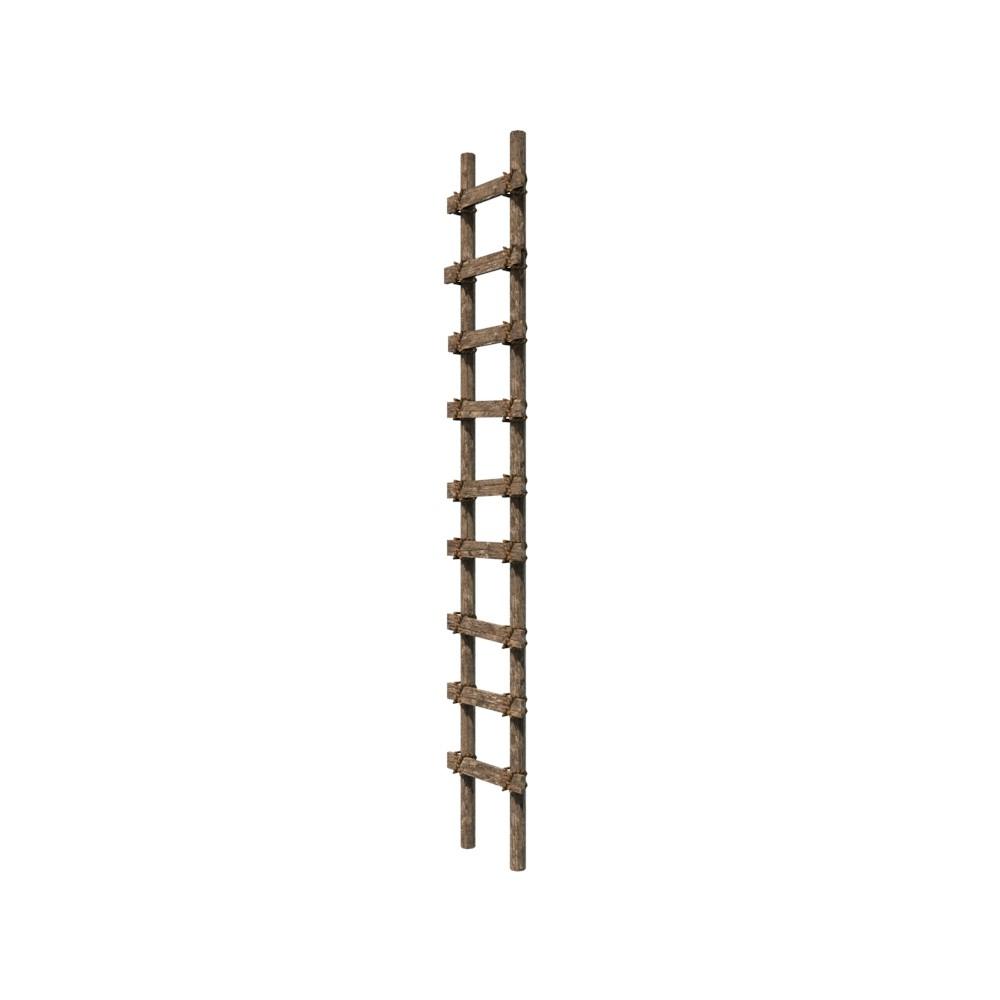 Ladder1_05.jpg