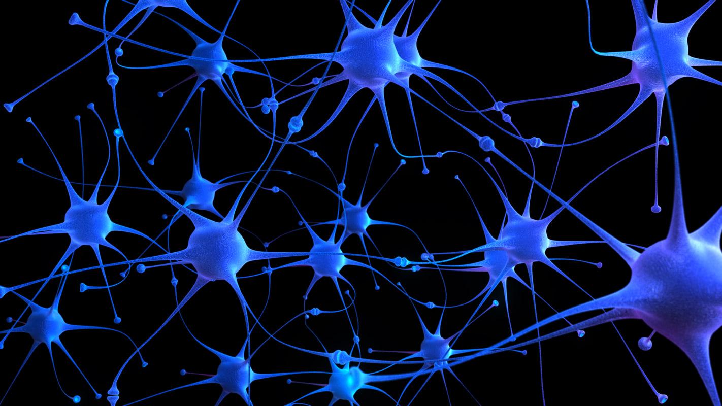 neuronsx.jpg
