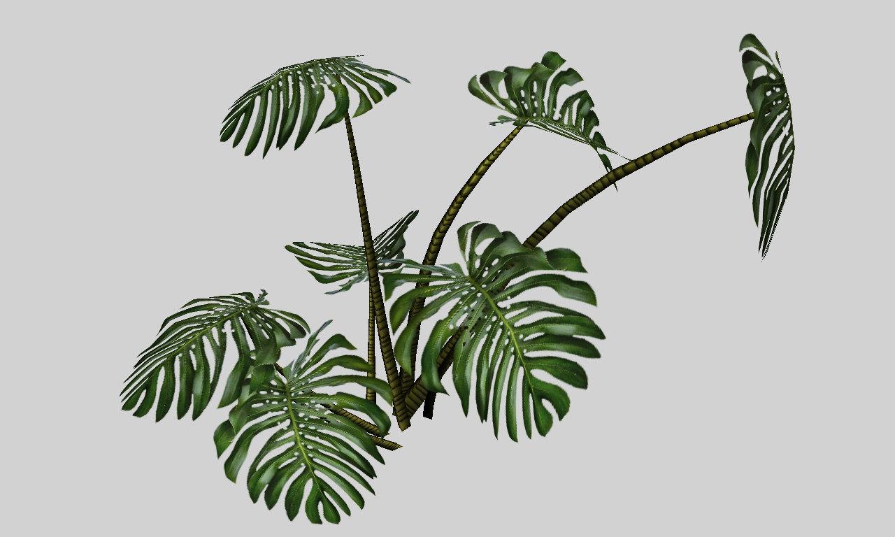 3d model of monstera tropical plant. Black Bedroom Furniture Sets. Home Design Ideas