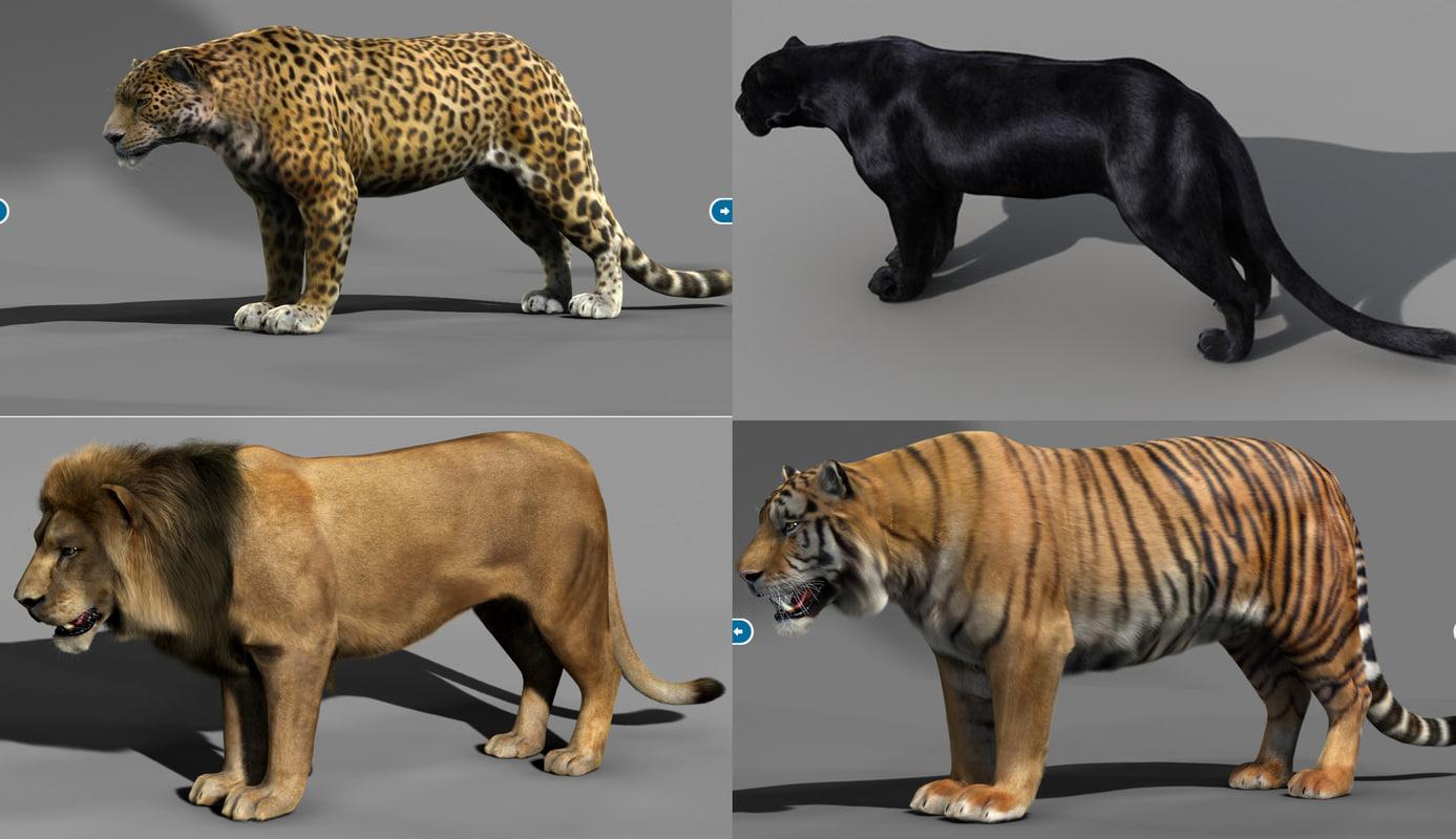 3d Model Lioness Fur Cat