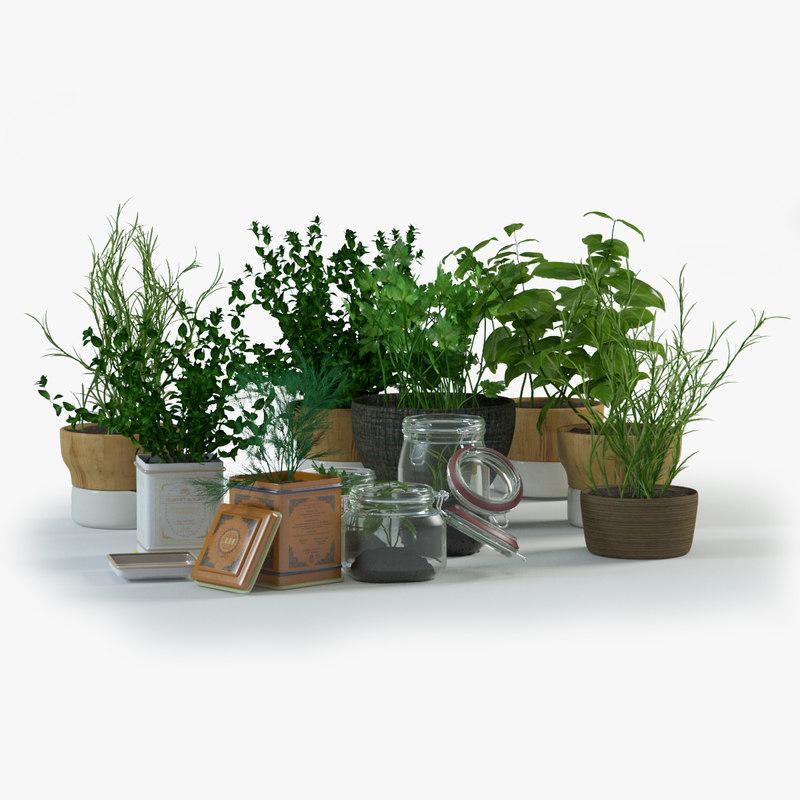 Plants Clear.jpg