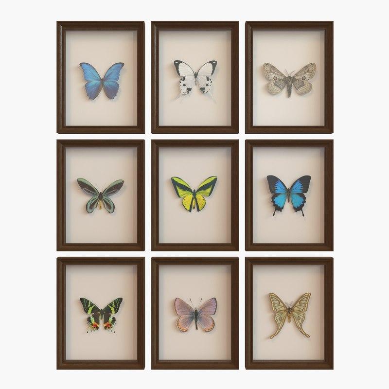 Hanging Butterfly Wall Decor : D model framed butterfly