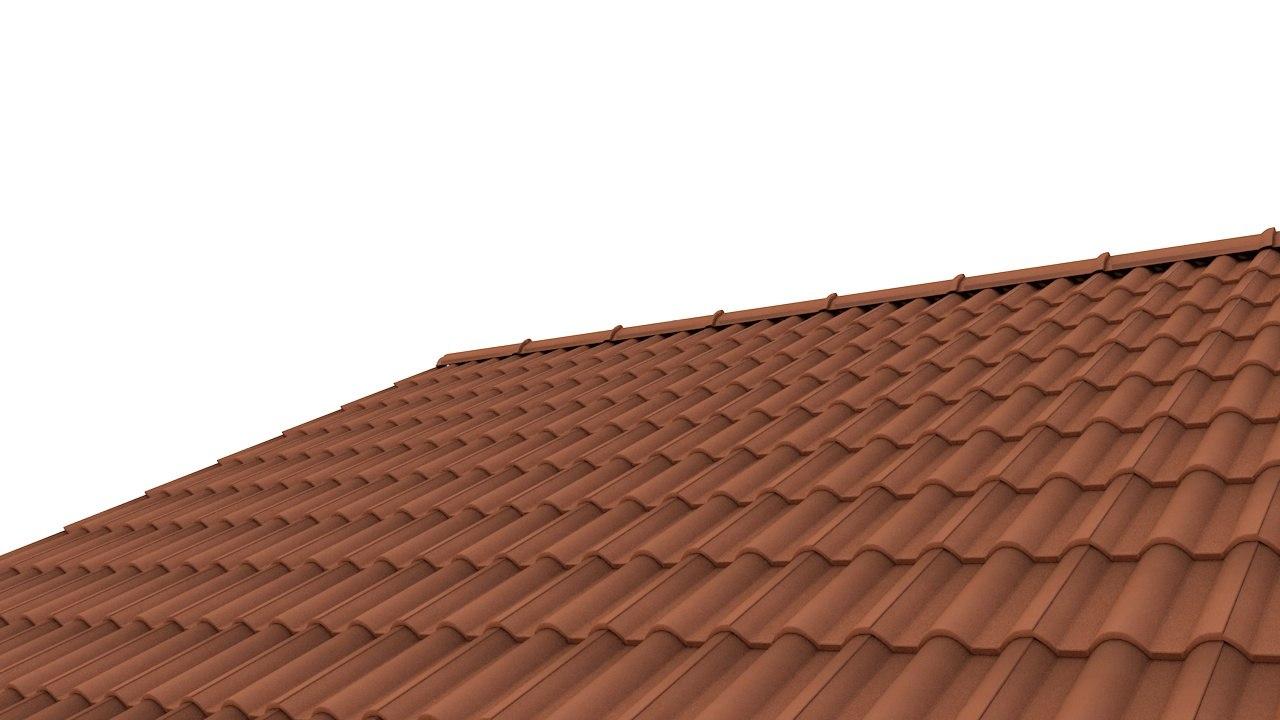04_roof tiles-3dmodel.jpg