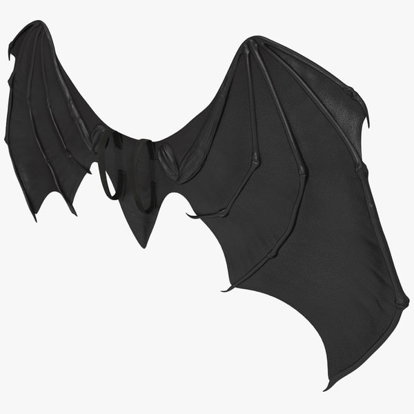 Costume Bat Wings 3D Models
