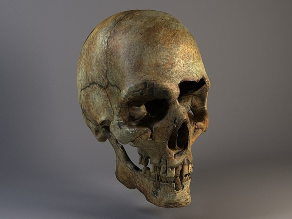 Man Skull Cracked Texture Maps