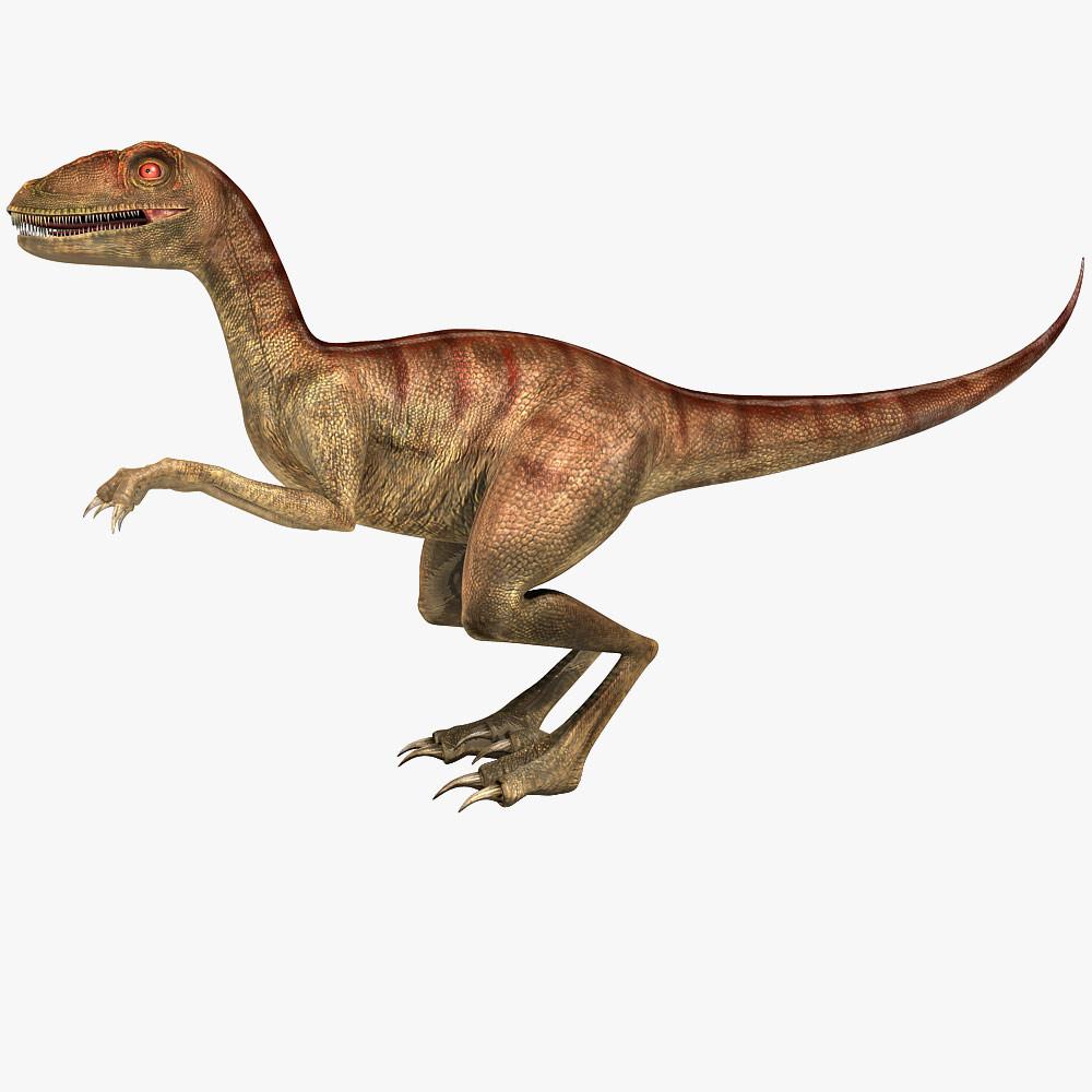 3d Model Velociraptor Raptor