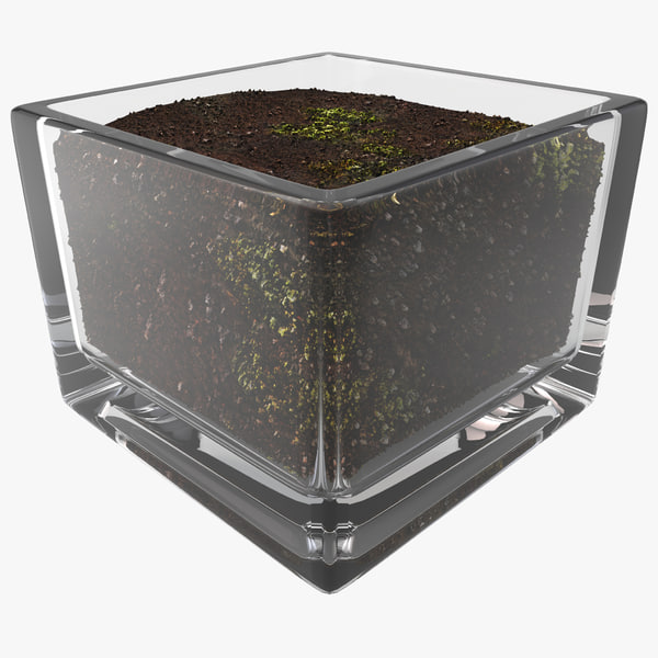 Square Glass Vase With Soil Texture Maps
