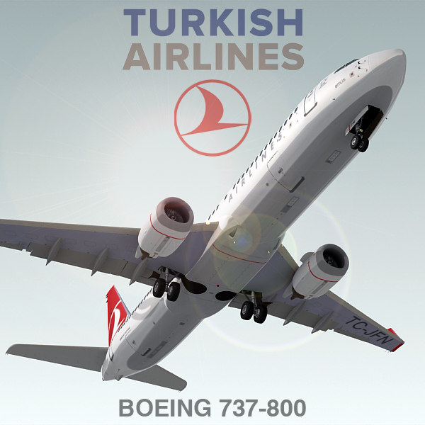 B737_800_turkish_01.jpg
