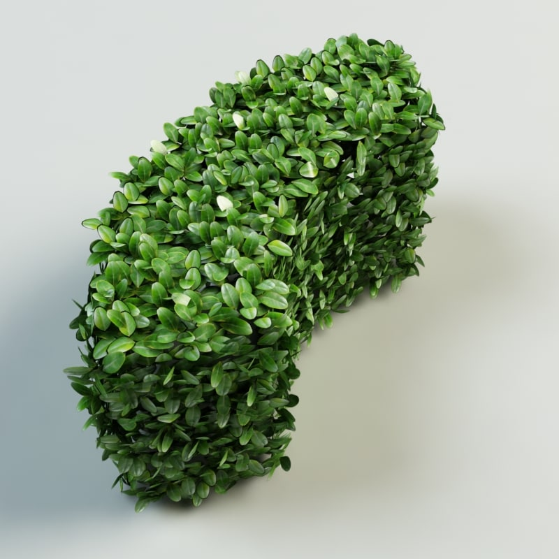 hedge_part_2_4.jpg