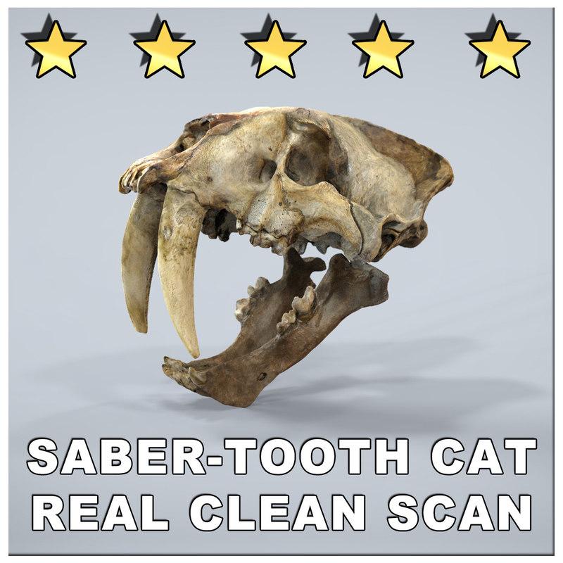 SABERTOOTH CAT SMILODON SCAN SKULL