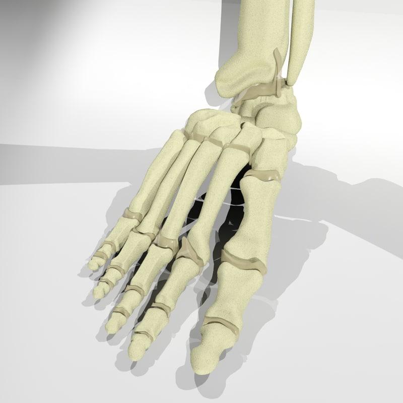 Foot-Prev-2.jpg