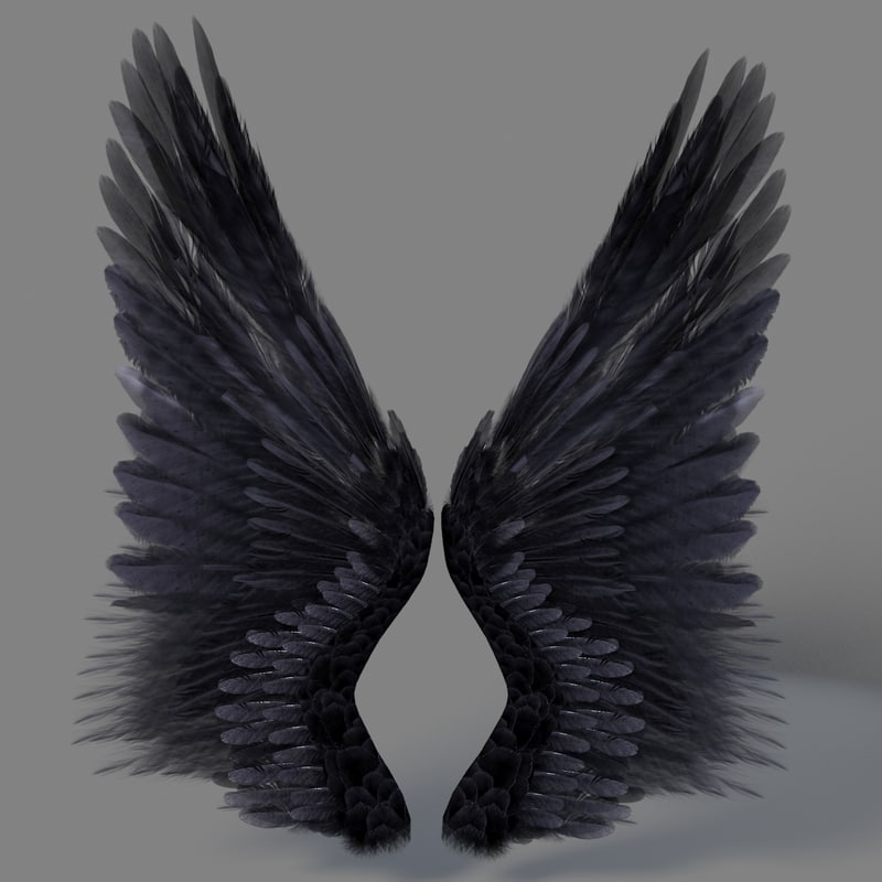 Realistic Angel Wings Related Keywords