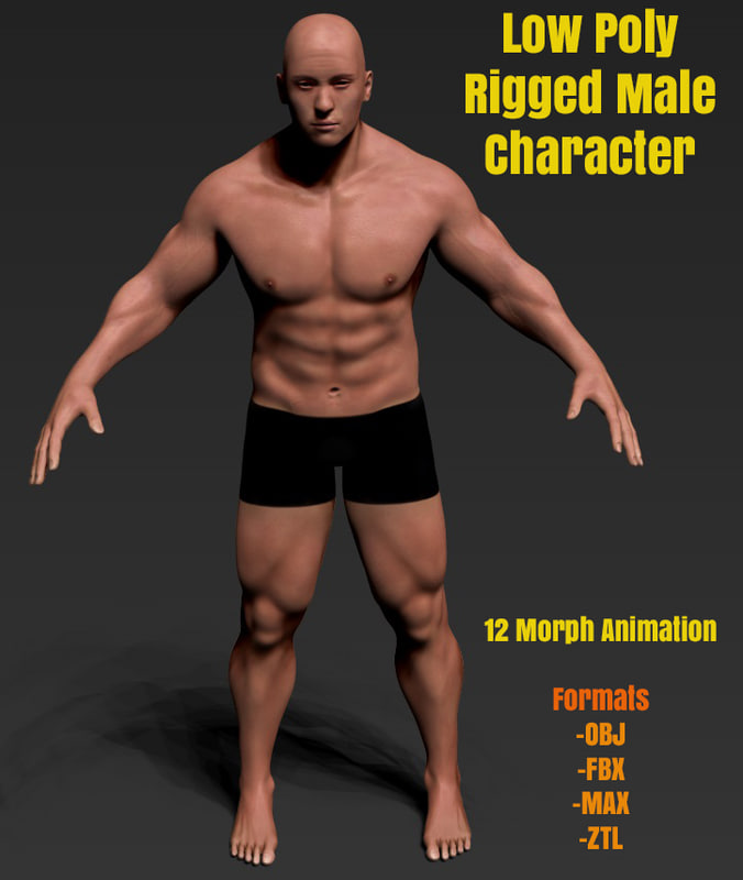 Low Poly Male Character Rigged