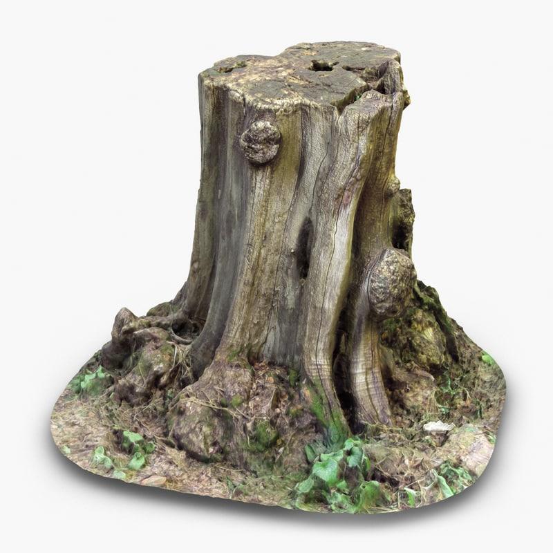 TreeStump1-2chk247.jpg
