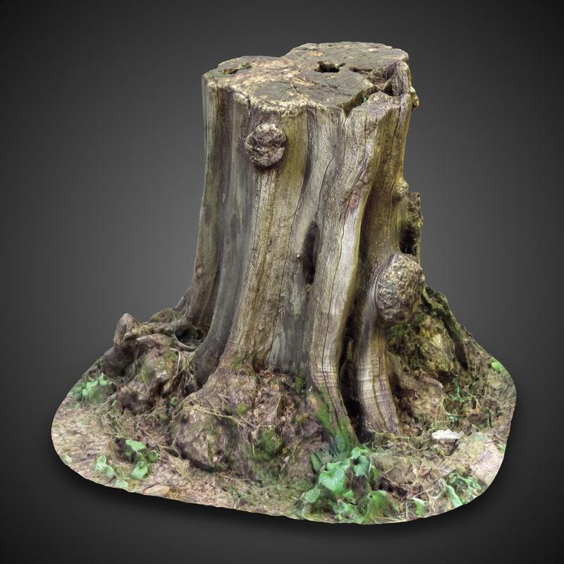 TreeStump1-2chkDark.jpg