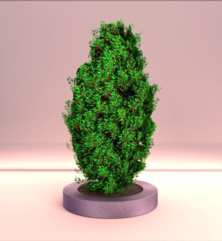 topiary shrub 2 shot 1.jpg